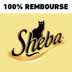 anti-crise.fr offre de remboursement sheba