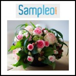 Test de Produit Sampleo : Bouquet de Roses - anti-crise.fr