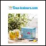 Test de produit Tous Testeurs : Thé glacé des Alizés - anti-crise.fr