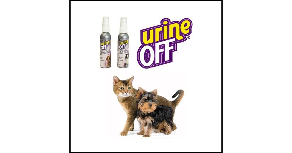Test de Produit Conso Animo : Détachant et anti-odeurs Urine Off - anti-crise.fr