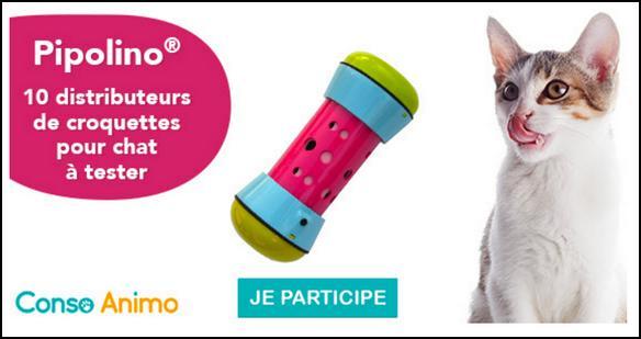 test de produit conso animo distributeur de croquettes pour chat pipolino. Black Bedroom Furniture Sets. Home Design Ideas