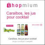 Offre de Remboursement Shopmium : Jusqu'à 50% sur Les Jus pour Cocktail - anti-crise.fr