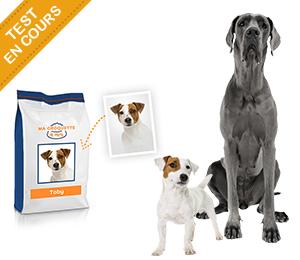 test de produit consoanimo ma croquette moi pour chien probal catalogues promos bons. Black Bedroom Furniture Sets. Home Design Ideas