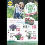 Catalogue Lidl du 18 au 21 avril 2018 (Jardin)