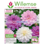 Catalogue Willemse du 10 mai au 30 juin 2018