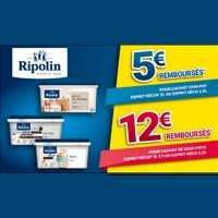 Offre de Remboursement Ripolin / Bricorama : Jusqu'à 12€ Remboursés sur Gamme Esprit Récup ou Déco